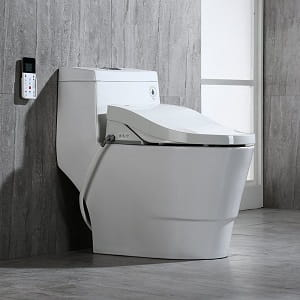 Surprising Best Bidet Toilet Combo For Guaranteed Hygiene And Comfort Cjindustries Chair Design For Home Cjindustriesco